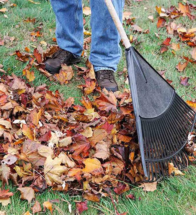 raking1