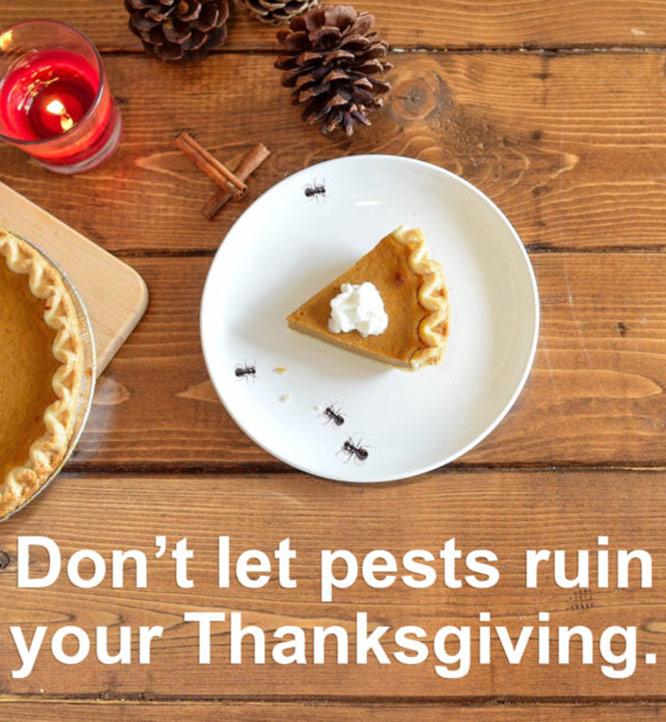 Thanksgiving666x622
